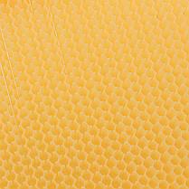 1Pcs Пчелиная рама Auto Honey Hive Beehive Рамки Фурнитура Пчелиные рамы Пищевой пластик 1TopShop, фото 3
