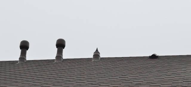 Выходы вытяжек и вентиляции  эффективно выводят отработанный воздух из помещения на улицу. Использование на кухне вытяжки без двигателя с дальнейшим подключением крышного вентилятора снизит уровень шума на кухне.