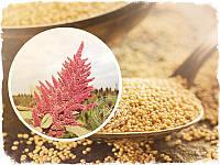 Семена амаранта пищевые, 1 кг