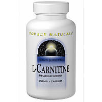 L-карнитин фумарат, L-Carnitine, Source Naturals, 120 капсул