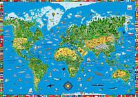 Подкладка для стола Карта мира Moll