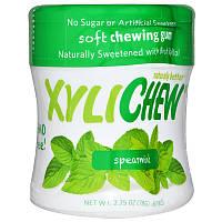 Xylichew Gum, Жевательная резинка, подслащенная березовым ксилитом, курчавая мята, 60 штук, 2,75 унций (78 г)