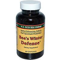 Y.S. Eco Bee Farms, Bee's Winter Defense, 60 Capsules