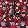 Зонт складной  полуавтомат Бордовый с кругами, фото 4