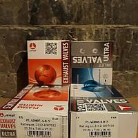 Клапаны ВАЗ 2110,2112,2170 Приора,Калина впуск,выпуск 16 шт. AMP(азот)
