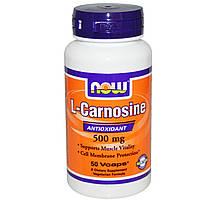 L-Карнозин (L-Carnosine) 500 мг – 50 капс.