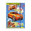 Папка для тетрадей на резинке Cool cars
