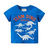 Футболка для хлопчика Team Dino Jumping Meters, фото 1