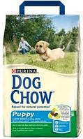 Корм для собак Dog Chow Puppy Large Breed с индейкой с рисом 14 кг