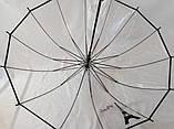Жіночий парасольку прозорий на 14 спиць, фото 4