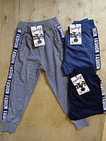 Спортивные штаны. Размеры: 98,104,110,116,122,128