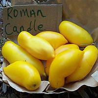 Egrow 100Pcs / Pack Манго-помидор Семена Сад Горшечная посадка фруктовых овощей