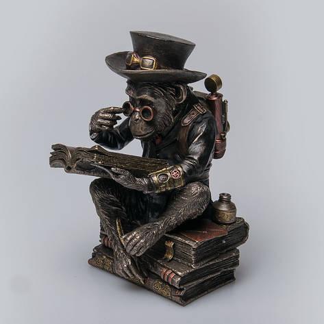 Статуэтка Шимпанзе-профессор Veronese Италия (19 см) 76796A4, фото 2