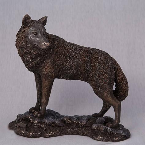 Статуэтка Волк (24*23 см) 74614A4 Veronese Италия, фото 2