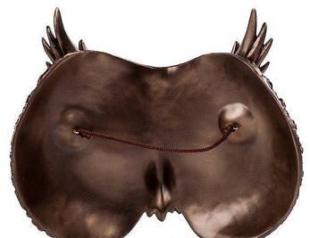 Настенная маска «Филин» (21*19 см) Veronese 76780A4, фото 2