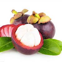 Egrow 50Pcs / Pack Mangosteen Семена Тропический кислый сладкий фрукт Семена Сад Растения Дерево Бонсай