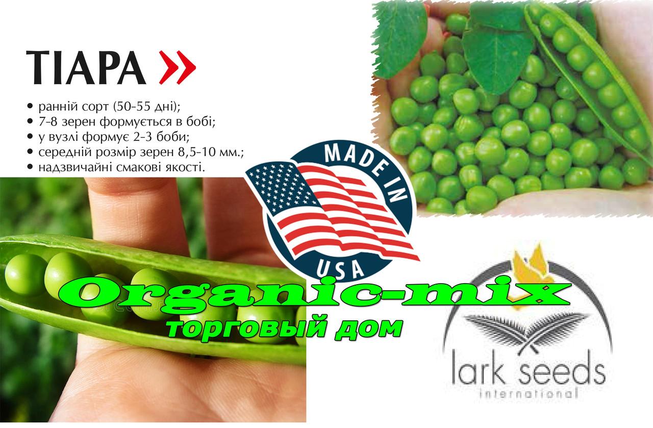 Ранний, сахарный, крупный горох TIARA / ТИАРА (фасовка 100 000 семян), Lark seeds (США)