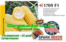 Семена, скороспелая, сахарная кукуруза ФОРВАРД (1709) F1 США, фермерская упаковка (2500 семян)