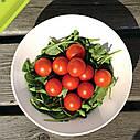 Набор мисок из бамбука Berghoff Cook&Co 6 пр. 2800057 , фото 6