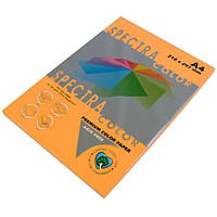Бумага A4 'Spectra ' НЕОН 100 листов /80гр  № 371 ( ORANGE ) Куркума