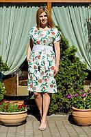Летнее платье     (размеры 50-54) 0087-60