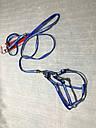 Шлея с поводком One Touch Camon XS синяя, фото 2
