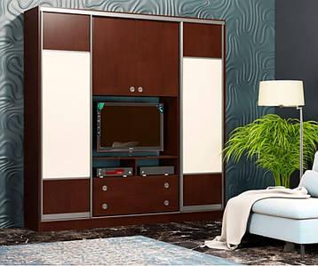 Шкаф-купе для гостиной 2100х450х2400