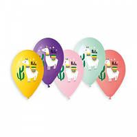"""Воздушные шары """"Лама Хола"""" 13""""(33см) Пастель Ассорти В упак:50 шт."""