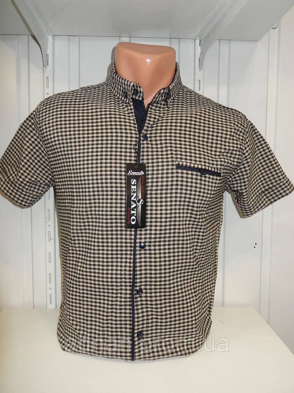 Рубашка мужская CORM короткий рукав, мелкая клетка, стрейч котон 013 \ купить рубашку оптом.