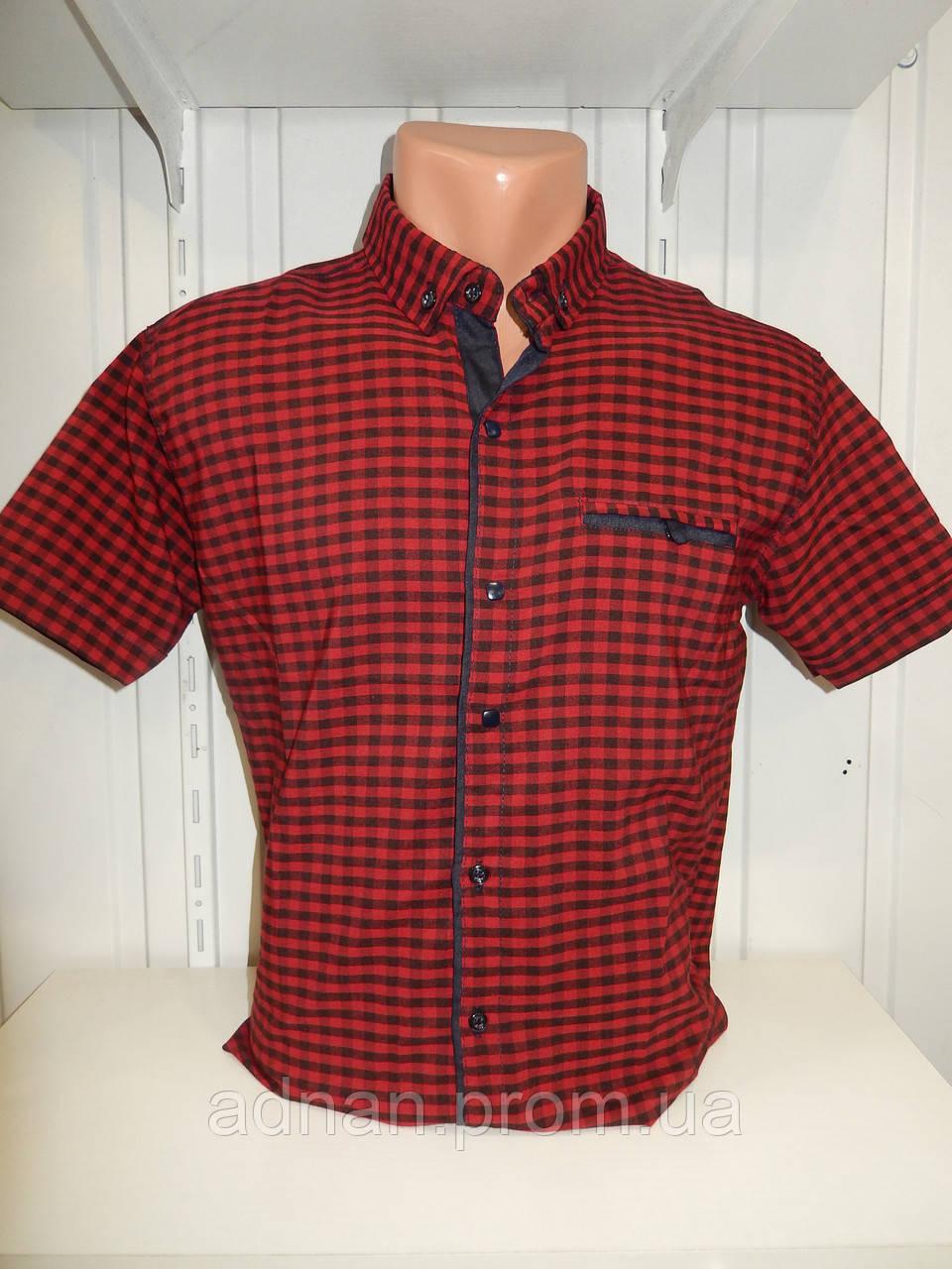 Рубашка мужская CORM короткий рукав, клетка, стрейч котон 002 \ купить рубашку оптом.