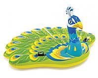 Матрас надувной Intex Павлин (Peacock) арт.57250. Отлично подходит для отдыха на море, в бассейне, фото 1