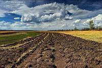 Які землі сільгосппризначення в Україні найбільш забруднені