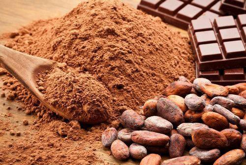 Какао порошок натуральний, 10-12%, Gerkens, Нідерланди