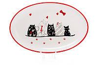 Блюдо керамическое с объемным рисунком Кошкин дом DM047-C