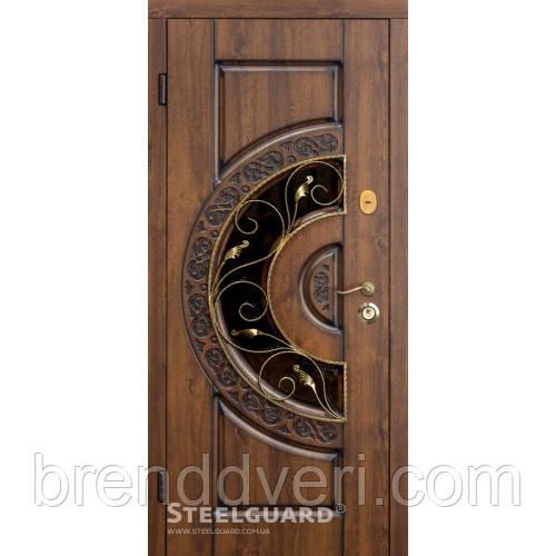 Двери Steelguard Optima glass