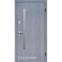 Двери Steelguard AV-1 Grey Glass