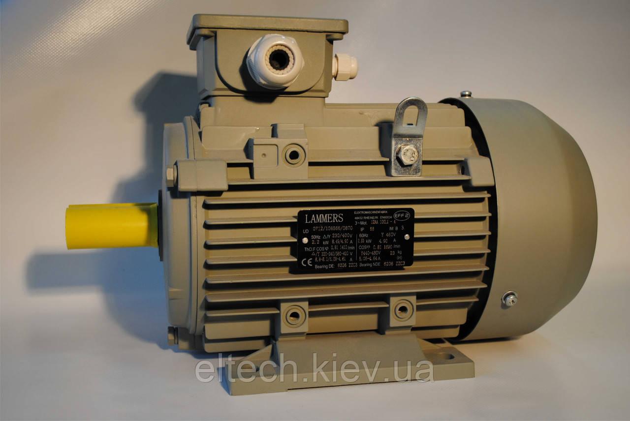 Электродвигатель асинхронный Lammers 13AA-112М-2-В3-5,5кВт, лапы, 3000 об/мин