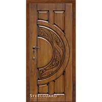 Двери Steelguard Mercury