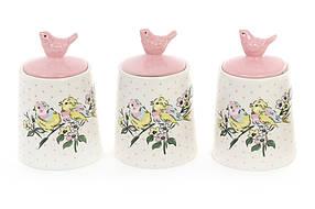 Набор (3шт) керамических банок 175мл для сыпучих продуктов Птички DK0071-D