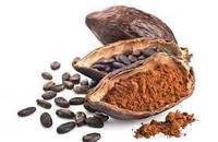 Какао порошок натуральный Монделис, жирность 10-12%