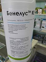 Фунгіцид БЕНЕЛУС, 1л   ADAMA