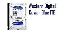 Жесткий диск Western Digital (WD) Caviar Blue 1TB