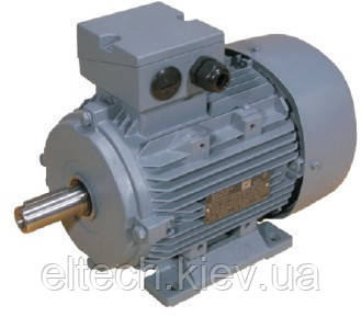 Электродвигатель асинхронный Lammers 13ВA-315L-2-В3-160кВт, лапы, 3000 об/мин.