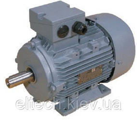 Электродвигатель асинхронный Lammers 13ВA-315L-2-В5-200кВт, фланец, 3000 об/мин.