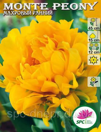 Тюльпан махровый ранний Monte Peony, фото 2