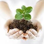 Біологічні засоби захисту рослин