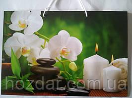 Пакет подарочный бумажный большой горизонтальный 36х25х10 (26-056)