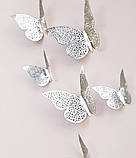 Бабочки на скотче серебристые - в наборе 12шт. разных размеров, в комплект идет 2-х сторонний скотч, фото 2