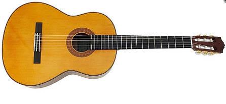 Класична гітара YAMAHA C70, фото 2