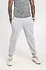 Мужские спортивные штаны 403 серый